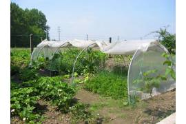 Serre chenille de jardin largeur 1,3m